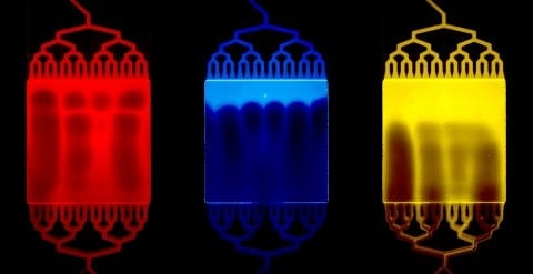 3D Bioprinting: Truth is Beautiful